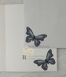 Click the photo to check out my Creating a Stamped Background idea that uses this pretty butterfly.