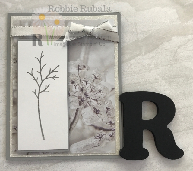 There are many stamp sets that go with the Feels Like Frost dsp. Check out my Feels Like Frost in Winter creation.