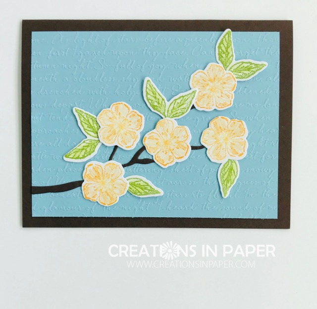 The Scripty embossing folder makes the perfect background for these blossoms. The Faux Watercolor technique was perfect for this Scripty Forever Blossoms creation.