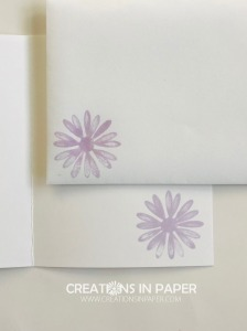 This cute flower pairs well with the leaf designer series paper. Check out the Daisy Lane with Forever Greenery DSP and place your order in my online store.