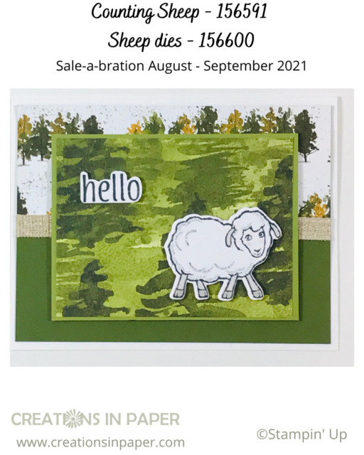 Make this Masculine Counting Sheep card using pattern paper.  Get all the details so you can make one yourself.