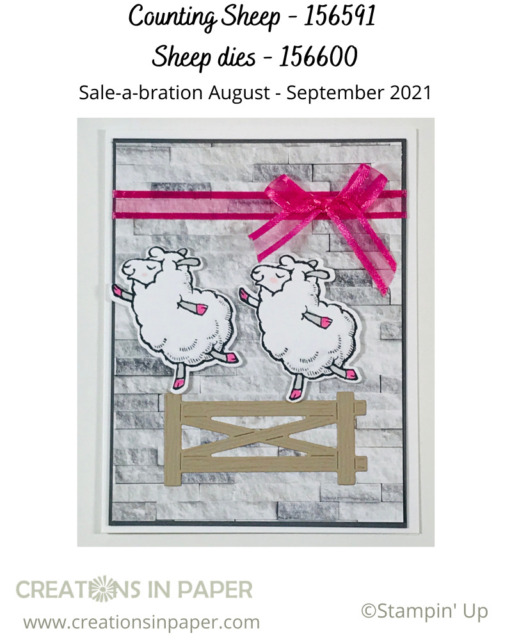 Isn't this the perfect card for a little girl who loves dance or gymnastics?  Earn the Stampin' Up Counting Sheep stamp set and dies with a qualifying order.